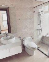 Cho thuê chung cư 3PN đồ cơ bản tại Vinhomes D'capitale 1300$/tháng 10378322