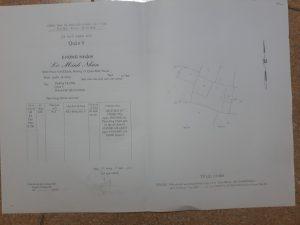 Cần bán lô bìa 2 mặt tiền chợ Tân Phú 11550836