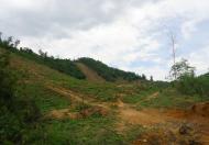 Bán đất tại xã Tân Vinh, Lương Sơn, Hòa Bình diện tích 12000m2 giá 310 triệu