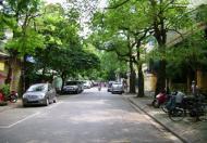 Bán nhà mặt phố Chân Cầm diện tích 58,6m mặt tiền rộng 4,22m