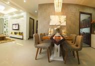 Cho thuê căn hộ Him Lam Riverside, Quận 7, giá tốt nhất thị trường
