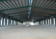Cho thuê kho 10000m2, nằm trong khu công nghiệp VSIP2, Bình Dương