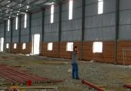 Cho thuê nhà xưởng 2650m2 trong KV 4500m2, KCN Tân Đô, Đức Hòa, Long An