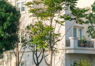 Chính chủ cần tiền bán gấp lô BT góc siêu đẹp đường Hoa Lan 1 dự án Vinhomes Riverside long biên