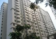 Bán căn hộ chung cư tại Tân Phú, Hồ Chí Minh, diện tích 75m2, giá 1.35 tỷ