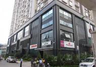 Chính chủ cho thuê chung cư 170 Đê La Thành, Đống Đa, Hà Nội làm văn phòng và để ở