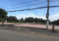 Bán đất đường số 10 – Tam Đa, P Long Trường, Quận 9