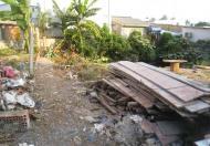 Bán đất đường 14, Phước Bình, Q9, 15.3tr/m2