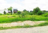 Cần bán gấp đất vườn đường Tam Đa, quận 9, DT 1152m2 cam kết lên đất thổ cư 100%