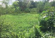 Bán nhà vườn cạnh suối, 5 sào ngoại ô thành phố, giá 1,15 tỷ