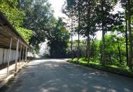 Bán & cho thuê xưởng SKC, 5.772 m2, KV đất 24.091 m2, trong KCN Bàu Bàng, Lai Uyên, Bàu Bàng