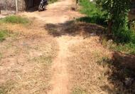 Đất lúa, Vĩnh Thanh, Nhơn Trạch, Đồng Nai, vị trí đẹp, giá cực rẻ