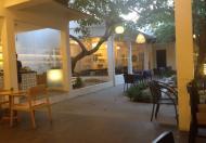 Mặt bằng 200m2 cho thuê làm quán nhậu, cafe đường Châu Thị Vĩnh Tế, đoạn gần Phan Tứ