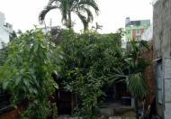 Cần bán gấp lô đất 2 mặt tiền đường Võ Thị Yến - Trần Văn Ơn, khu FLC. Lh: Hằng 0962656458