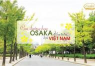 Cần bán gấp căn hộ chung cư Osaka Hoàng Mai căn 2 ngủ view Hồ Linh Đàm giá 1,1 tỷ