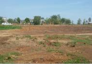 Bán đất mặt tiền đường 51B, hướng Đông Nam, p10