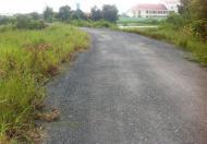 Bán đất tại đường Liên Ấp 2- 3- 4, Hưng Long, Bình Chánh, Hồ Chí Minh, diện tích 1800m2