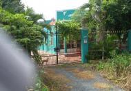 Bán 500m2 đất kho xưởng, xã Phong Phú, huyện Bình Chánh
