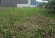 Cần tiền bán rẻ lô đất 115m2 Nguyễn Văn Tạo, Nhà Bè