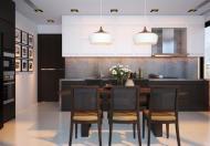 Cho thuê căn hộ chung cư tại đường Huỳnh Thúc Kháng, DT 110m2, 3 ngủ đủ đồ, giá 12 triệu/tháng