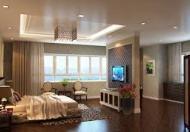 Bán căn hộ chung cư 64m2 toà C KĐT Nam Trung Yên, quận Cầu Giấy
