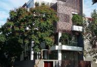 Bán biệt thự An Phú Hưng Quận 7 cực sang trọng DT 7x20m, xây 1 trệt 2 lầu sân thượng