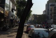 Bán nhà mặt phố Trần Quang Diệu, 100m2, MT 5m, giá 25 tỷ