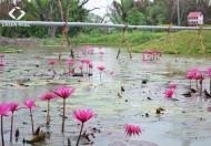 Đất nền KDC ngay vòng xoay Phú Hữu