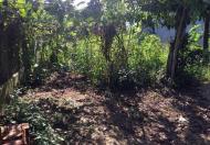 Cần bán đất trồng cây lâu năm gần khu công nghiệp Lê Minh Xuân