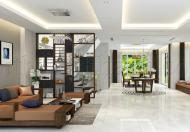 Nhà hẻm 10m Trần Nhật Duật, DTSD 250m2, giá 12,5 tỷ, LH 0973 069 181