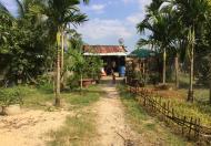 Cần bán 2.4 ha đất làm vườn và ao nuôi cá, giá 1.8 tỷ, Diên Tân, Diên Khánh, Khánh Hòa