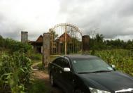 Bán Đất Trang Trại, Trồng Cây Lâu Năm  Trung Tâm TP Mới Nhơn Trạch Đồng Nai.