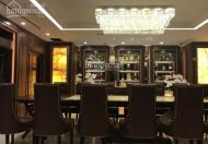 Cần cho thuê căn hộ tại Sky City 88 Láng Hạ, 110m2, 2PN, full đồ rất đẹp giá 15tr/tháng