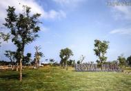 Đất nền cực hot với giá rẻ không ngờ, chỉ có tại Royal Park Huế chỉ có 9,8tr/m2