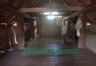 Đất vườn DT: 4,350m2 Nguyễn Thị Định có ao cá, cây ăn trái, nhà sàn gỗ hương