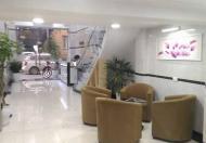 Khách sạn mini Nguyễn Chí Thanh 100m2, 7 tầng, giá 19,5 tỷ