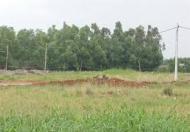 Chuyển nhượng 100 ha, dự án du lịch suối nước nóng Đam Rông, Lâm Đồng