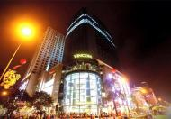 Cho thuê căn hộ cao cấp tại Vinhomes- Nguyễn Chí Thanh
