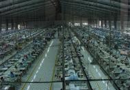 Cho thuê nhà xưởng đường Phan Huy Ích, phường 14, Gò vấp. DT 5.500m2, giá 60 ngàn/m2