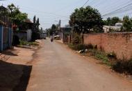 Bán đất tại Dự án Khu đô thị mới Bắc Tân Lợi, Buôn Ma Thuột, Đắk Lắk, DT 250m2, giá 1,2 tỷ