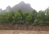 Cần bán mảnh đất 20.000 m2. Trong đó có 1.200 m2 đất thổ cư xã Liên Sơn- Lương Sơn- Hòa Bình