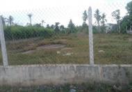 Bán đất tại đường Long Thuận, Quận 9, Hồ Chí Minh, diện tích 1346m2, giá 8.8 tỷ