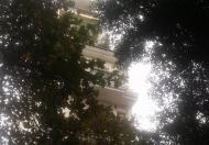Bán nhà mặt phố Ngô Sĩ Liên Đống Đa Hà Nội, 9 tầng 138m2 mặt tiền 4,1m LH; 0947799889