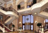 Bán chung cư siêu sang D'. Palais De Louis - Tân Hoàng Minh
