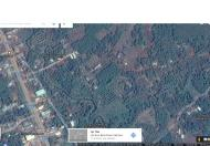 Bán đất tại đường Quốc Lộ 13, Lộc Ninh, Bình Phước, diện tích 1952m2, giá 200 triệu