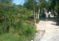 Tôi cần bán 760m2 đất đường Nguyễn Văn Thời,Bình Chánh,Hồ Chí Minh, gía 1.7 tỷ, sổ riêng