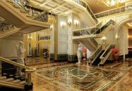 Kiệt tác Vinhomes D'.Palais De Louis – Tân Hoàng Minh