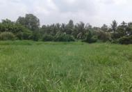 Bán lô đất nông nghiệp, DT 1.000m2, sổ đỏ riêng, giá 6 tỷ