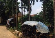 Cần bán mảnh đất chính chủ tại xã Liên Sơn- Lương Sơn- Hòa Bình