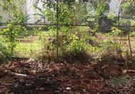 Bán đất thổ cư tại đường B1, Buôn Ma Thuột, Đắk Lắk, diện tích 100m2, giá 320 triệu